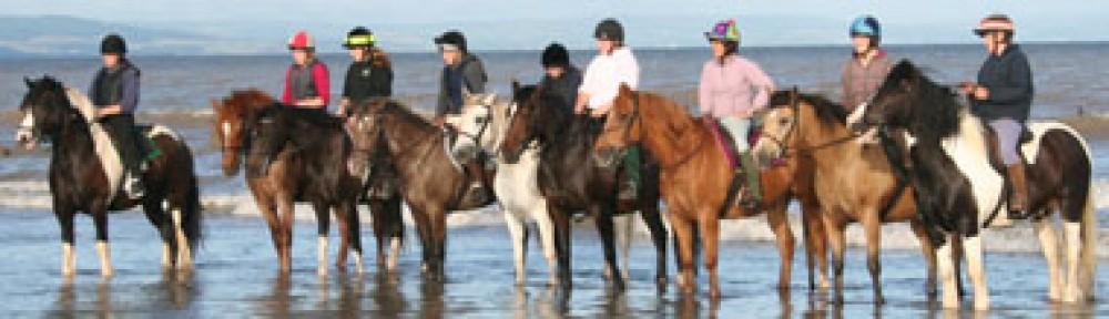 Red Park Equestrian Centre